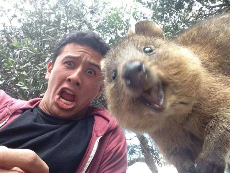 Best. Selfie. Ever.