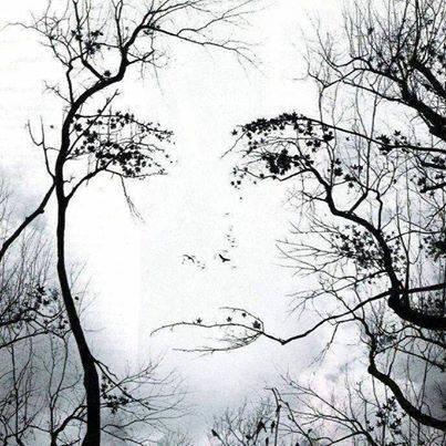 a natura sa stupirci più che mai, ci osserva ..