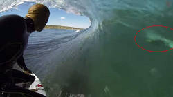 Le surfeur Kelly Slater frôle un requin blanc  En savoir plus: http://www.chronofoot.com/surf/le-surfeur-kelly-slater-frole-un-requin-blanc_art43921.html Copyright © Gentside Sport