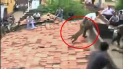 Un léopard sème la panique et blesse un homme dans une ville indienne  En savoir plus: http://www.maxisciences.com/l%e9opard/un-leopard-seme-la-panique-et-blesse-un-homme-dans-une-ville-indienne_art32436.html Copyright © Gentside Découverte